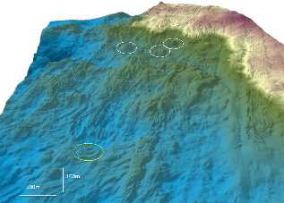 3D bathymetry of the study area
