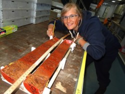 Adeline describes the gravity core after splitting the first section