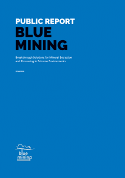 Final Report of BLUE MINING